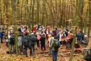 Geologická exkurze do jižní části Českého krasu | Autor: Josef Mottl