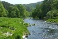 EVL Údolí Jihlavy - niva řeky Jihlavy pod Lhánicemi | Autor: Jaromír Maštera