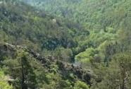 Mohelenská hadcová step s kaňonem řeky Jihlavy | Autor: Jaromír Maštera