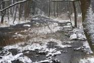 Zimní Chrudimka  v  PR Krkanka | Autor: Zdena Koberová