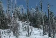 NPR Kněhyně-Čertův mlýn, vrcholová partie Kněhyně v zimě | Autor: Pavel Popelář