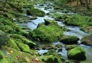 PR Krkanka v CHKO Železné hory -  kamenitý tok řeky Chrudimky | Autor: Zuzana Růžičková