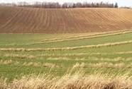 Zemědělská krajina s mezemi u Hati (okr. Opava) | Autor: Radim Jarošek
