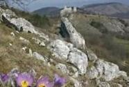 NPR Tabulová, Růžový vrch a Kočičí kámen.V pozadí Sirotčí hrádek a hřeben Pálavy. | Autor: Danuše Turoňová