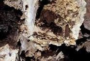 Jeskyně Na Turoldu , Žraločí tlama | Autor: Petr Zajíček