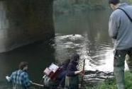 Monitoring ryb v Litovelském Pomoraví | Autor: Lenka Jeřábková