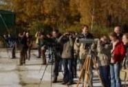 Monitoring vodních ptáků na Bezdrevu | Autor: Jan Procházka