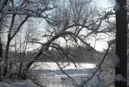 Zimní krajina v PR Horní Lužnice | Autor: Miroslav Hátle