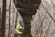 Magnetovec skalní hřib | Autor: Vlastislav Vlačiha