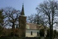 Památné stromy v Přáslavicích na hřbitově | Autor: Šárka Mazánková